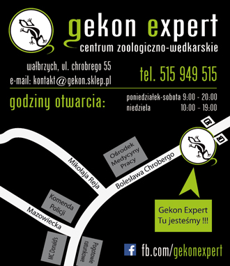 gekon-1m