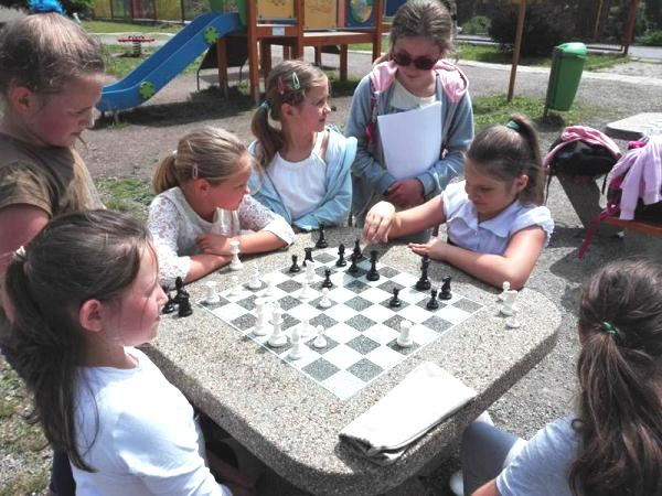 szachy gluszyca